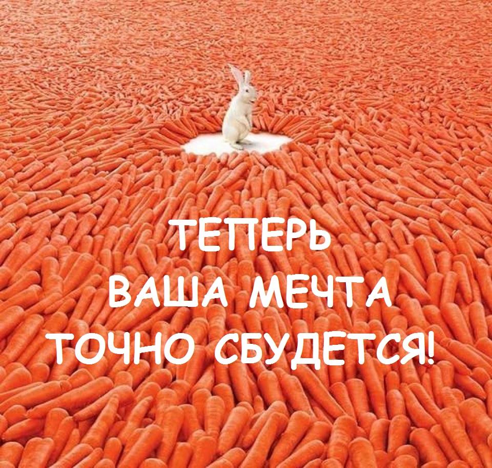 Заяц в окружении морковки