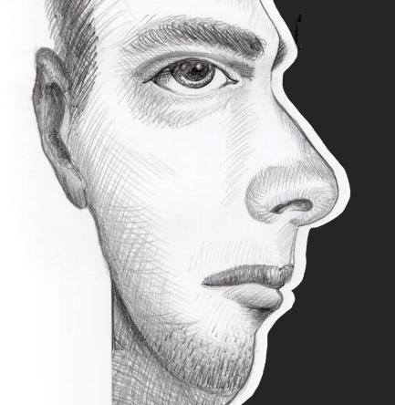 Оптический обман - лицо или анфас или в профиль, коммуникативный инвалид, как общаться